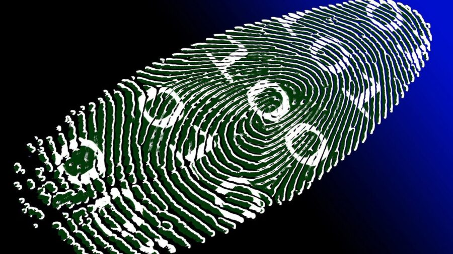 D'CENT. Обзор аппаратного кошелька для цифровых активов
